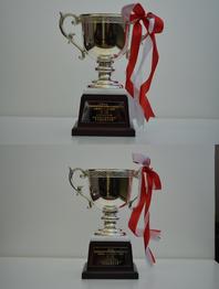 第6回 全国自動車教習所教習指導員安全運転競技大会 受賞トロフィー