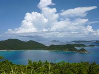 朝の散歩コースにおススメです。 座間味島の自然を存分に味わってほしいので散歩コースにいかがでしょう。