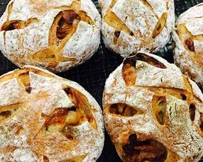 青森県産リンゴのハードパン
