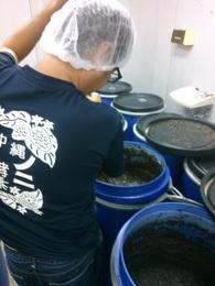 発酵の状況を細やかに観察し、嫌気発酵・好気発酵を行う。 プクプクと泡が発生し、分解が進んで行きます。