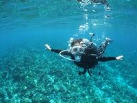 那覇近海、チービシ礁、慶良間諸島でのご案内となります。    朝、ボート出港しましたら夕方まで帰港しません。ランチまで一日中海の上!!     ▪️所要時間   8時間    ▪️ダイビング本数  3本    ▪️エリア   チービシ礁、慶良間諸島    ▪️料金   22000円