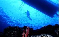 沖縄慶良間(ケラマ)の海をボートに乗りダイビングポイントへ。透明度がありはなれたボートのシルエット と浮上するダイバーを珊瑚の岩影から逆さになり見上げる。