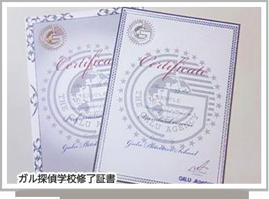 沖縄リゾート校では特別な料金をご用意致しました。  ・探偵学校(スタンダード) ・宿泊費(10日間) ・ダイビングライセンス(機材込) (航空代金は含みません)  上記セット内容で合計¥320,000と言う格安プランをご用意致しました。 9月までの入校生には更に¥20,000バックの¥300,000円で二つの資格を取得できます。