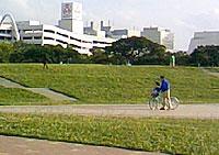 広場の向こうに、サンエーメインプレイス、沖縄県立博物館・美術館が隣接。散歩ついでにぷらっと立ち寄ろう。