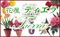 花屋 ティエラ 安謝店</br>(公式ホームページ) ロゴ