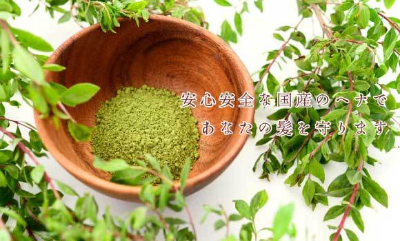 ♥私たちは本物しか造りません!!♥ 沖縄県、那覇市にある日本琉球ヘナ協会です。日本初、国産のヘナを生産し全国へ販売しております。オーガニック琉球ヘナは沖縄県内の農家と契約し無農薬のヘナを生産し、商品化しております。沖縄の太陽をたっぷり浴びたオーガニック琉球ヘナをどうぞお試しください。農場から商品化まで一貫した管理のもと製造しています。