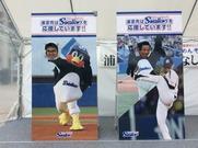 毎年恒例のプロ野球キャンプ観戦! 2016年は東京ヤクルトスワローズのキャンプを見学してきました。沖縄出身の選手もいるので みんなで応援してきました。