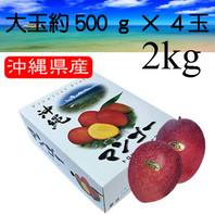 一玉 約500g4個入 【秀品 大玉4玉 2kg】