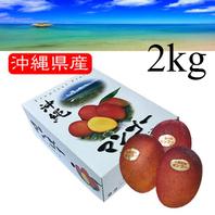 一玉 約500g4個入 【優品 大玉4玉 2kg】