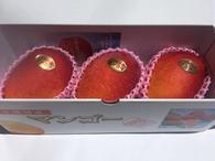 優品3玉 1kg マンゴー      ¥3,460(税込・送料別) ※2017年度 ¥3,460→¥3,160(税込・送料別)  ご家庭にはもちろん、贈答用にもおすすめ出来るマンゴーです。 色付きが秀品マンゴーと多少かわりますが綺麗でおいしい優秀マンゴーです。  ☆大切な方への贈物に!きっと喜ばれます! もちろん ご自分用!ご家族用!是非いかがですか。。☆