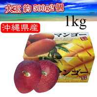 一玉 約500gの2個入 【秀品 大玉2玉 1kg】