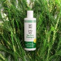 *シャンプー* 消臭・消炎効果のあるティーツリーをはじめとした6つの植物成分と海藻保湿成分が、愛犬をやさしく洗い上げ、ふんわり、ツヤのある被毛へと導きます。 泡切れ、水切れがよく使いやすさは抜群!乾燥後もほのかに残る、上品なエッセンシャルオイルの爽やかな香りも人気の秘密です。 <ポイント> 新成分紅藻エキスとヒアルロン酸が皮膚や被毛にうるおい効果を発揮!天然アロエベラが優しく皮膚を保湿し、フケを防止します。