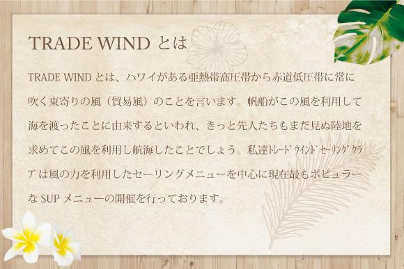 TRADE WIND とは、ハワイがある亜熱帯高圧帯から赤道低圧帯に吹く東より の風(貿易風)のことを言います。大昔帆船がこの風を利用して海を渡ったこと に由来するといわれています。きっとハワイ人(ポリネシア人)たちも未だ見ぬ 陸地を求めてこの風を利用し航海してきたことでしょう。 私達トレードウインドセーリングクラブは風の力を利用したセーリングメニューを中心に、現 在最も注目されているSUP(スタンドアップパドルボード)メニューを開催しています。 来る3月10日に始まるディズニー映画「モアナと伝説の海」にも出てくるセーリングカヌー、注目です!!