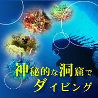 Sea Free(シーフリー)