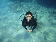 沖縄で海遊びのご案内