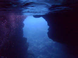 スノーケルツアー(青の洞窟)