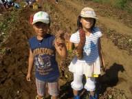 畑体験(いも掘り)