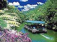 ギリシャ語で「ビオス」(生命)の森と名付けられた約10万坪の広大な敷地に、全長2kmの自然散策路を持つ亜熱帯の森や美しいランの花をはじめ、亜熱帯の植物や生き物たちが満ち溢れた豊かな森が広がる自然植物園。
