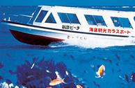 目の前に広がる、エメラルドブルーの海。色鮮やかな魚達を船底の強化ガラスから覗けます。手を伸ばすと触れそうな位のリアル感があります。