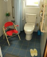 トイレの両サイドに手すりがあります。 シャワーチェアーもあります。