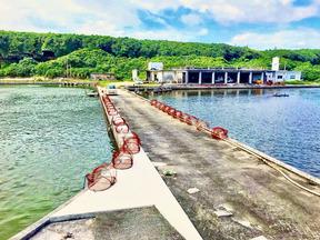 久米島には種苗供給センターがあり、水深612mより取水される清浄な海洋深層水を使用して種苗(稚エビ)を供給しています。  平成14年以降、弊社を含め久米島の養殖場ではこの稚エビを使用しており、この種苗の安定が日本一の生産量へと繋がっているのです。