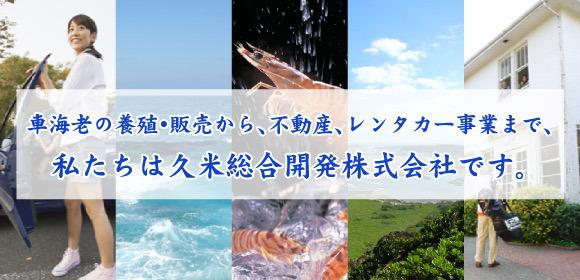車海老の養殖・販売から、不動産、レンタカー事業まで、私たちは久米総合開発株式会社です。 沖縄の車海老は全国一の生産量、久米島の車海老をどうぞご堪能ください。