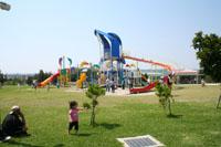 イルカ公園